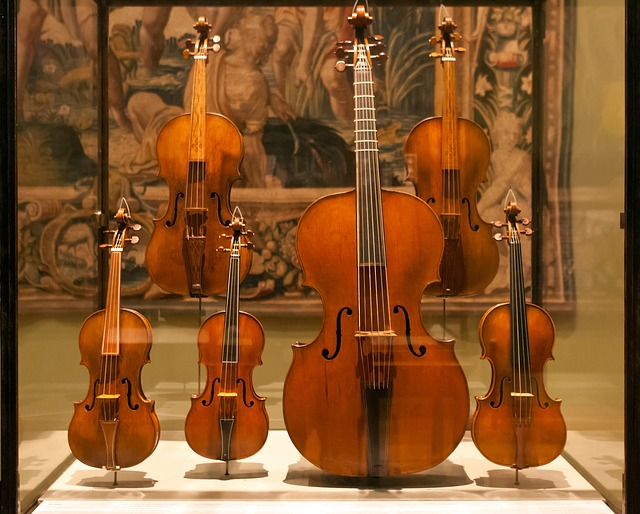 display case of violin family collection